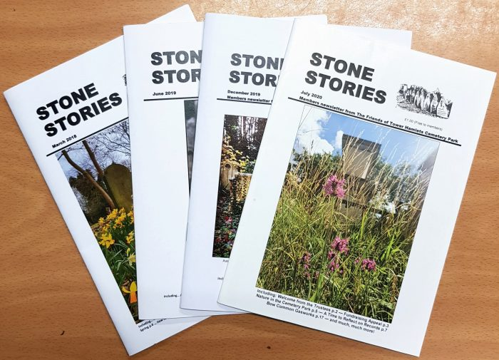 Paper issues of Stone Stories magazines