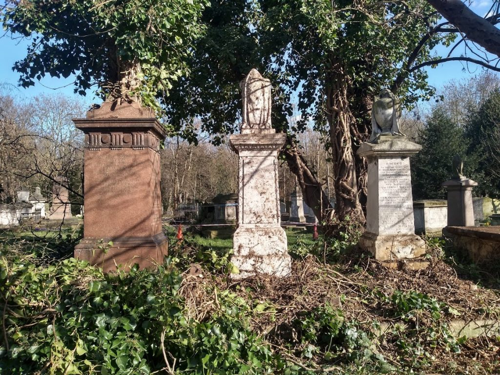 3 Victorian monuments in the sunshine with ivy cuttings in front of them